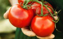 هل جربت وصفات الطماطم للوجه ؟