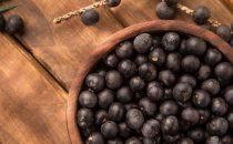 ثمار نخل الآساي هي الحل الأفضل للعناية ببشرتك