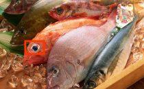 للمقبلات على الزواج كيف تميزين السمك الطازج؟