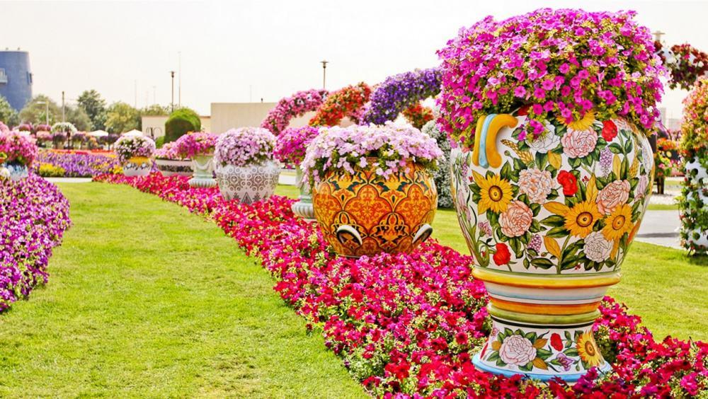 صور الأشكال الهندسية فى حديقة دبي ميراكل غاردن
