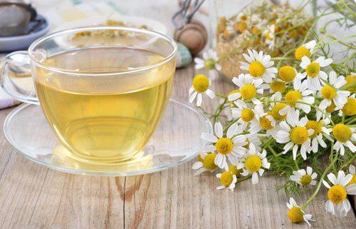 فوائد شاي البابونج واليانسون