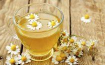 فوائد شاي البابونج الصحية والعلاجية