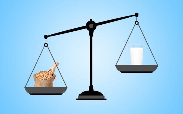 أطعمة تحتوي على نسبة من الكالسيوم أعلى من الحليب