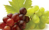 قناع العنب لشد المناطق المحيطة بالعينين