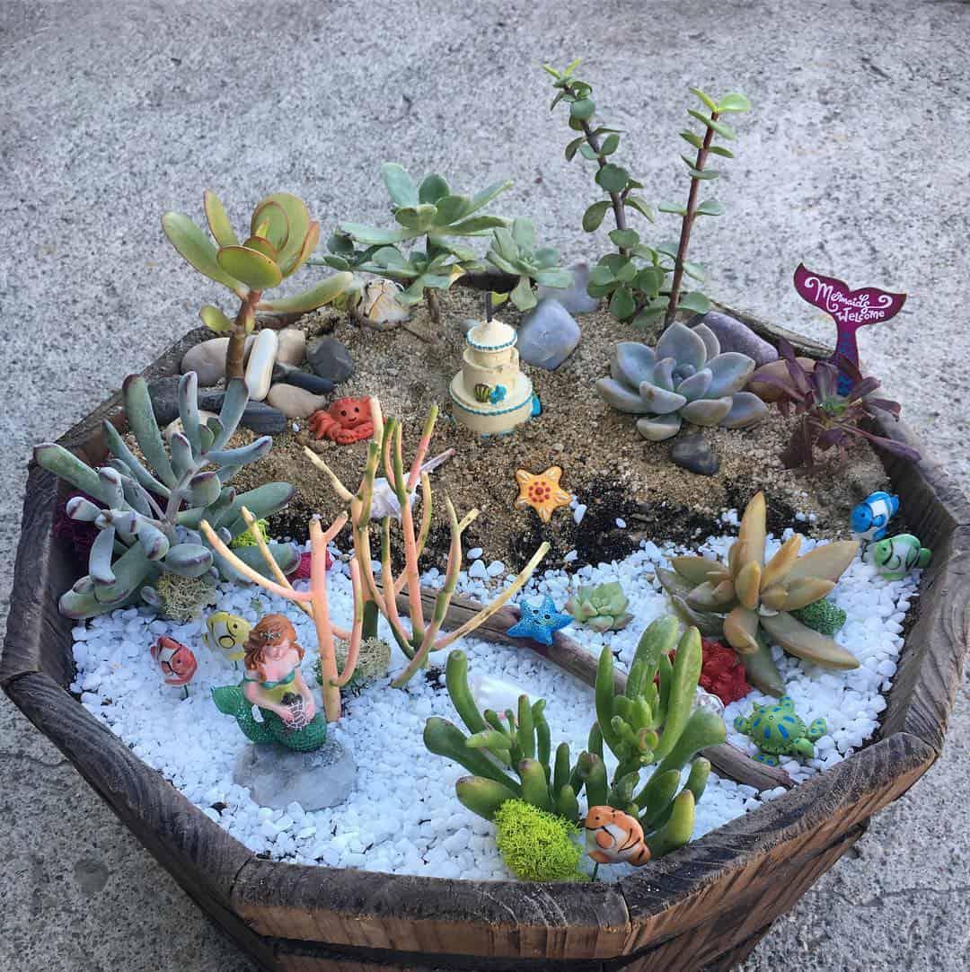 كيف تصنعين حديقة حورية البحر في بيتك