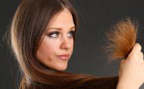 زيت الزيتون وزيت جوز الهند لعلاج الشعر التالف