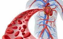 الجلوس لفترات طويلة يسبب مرض القلب التاجي