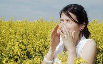 علاجات طبيعية لمكافحة الحساسية الموسمية