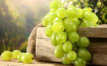 أهم فوائد العنب الأخضر للبشرة والصحة