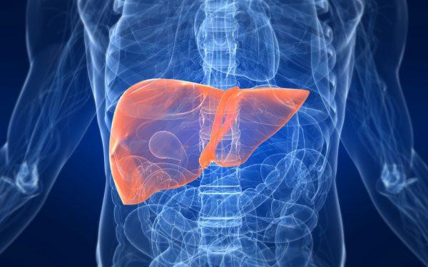 حلول طبيعية لعلاج دهون الكبد