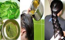 وصفة هندية مشهورة لتكثيف الشعر