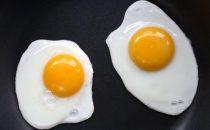 لماذا علينا أن نأكل البيض عدة مرات في الأسبوع؟