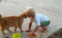هل تعرفين قيمة الحيوانات الأليفة في تربية الأطفال؟