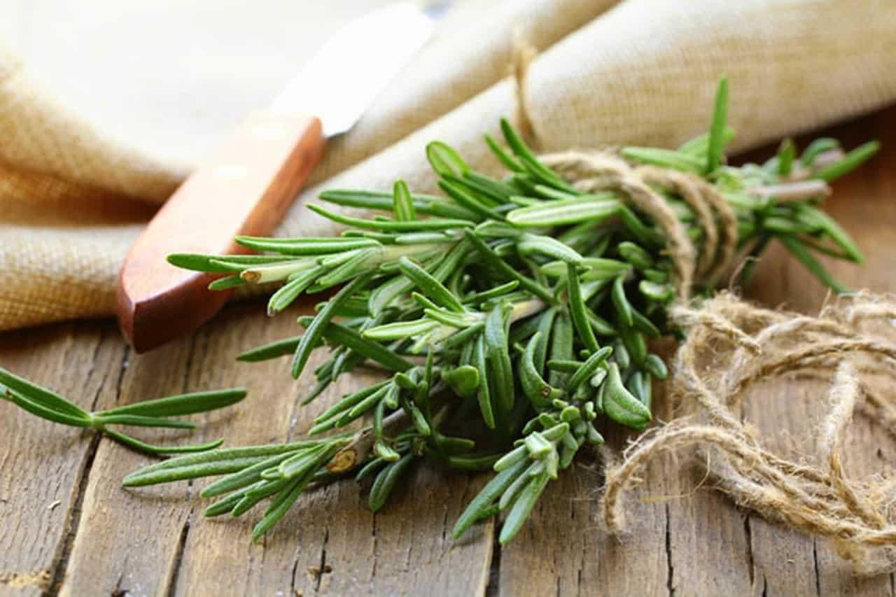 جربي وصفات الروزماري الطبيعية للبشرة والشعر