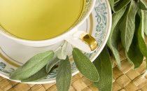 لنبتة المرمرية فوائد صحية مذهلة .. تعرفي عليها