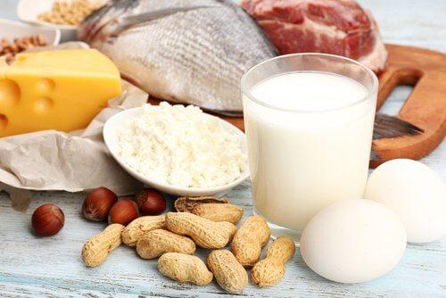 Augmentez-les-proteines-500x334
