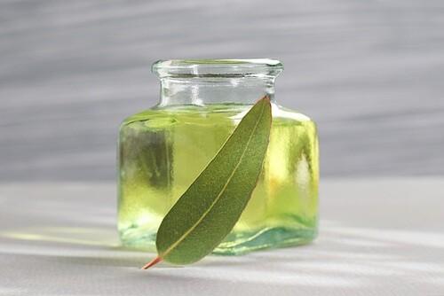 huile-deucalyptus