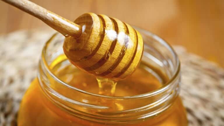 tout-ce-qu-il-faut-savoir-sur-le-miel-768x432