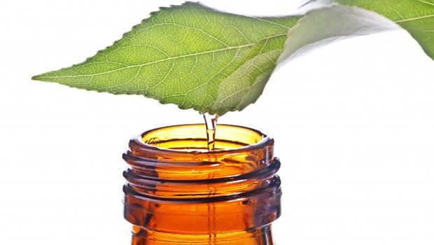 11 وصفة طبيعية لعلاج الفطريات على الجلد