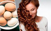 كيف تستطيعين استخدام البيض للعناية بجمال شعرك؟