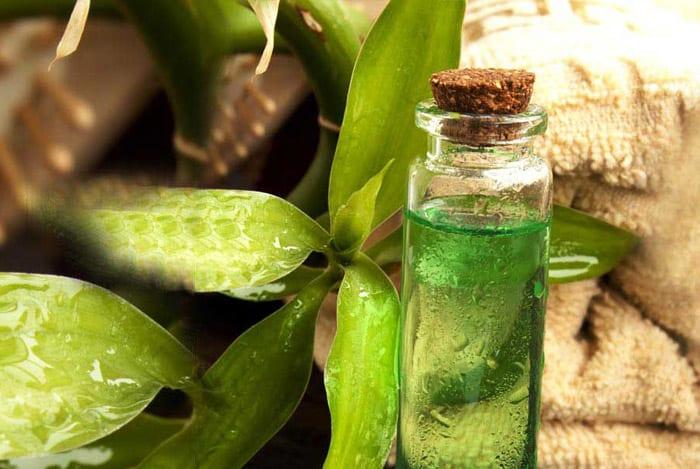 الاستخدامات الجمالية لزيت الشاي الأخضر