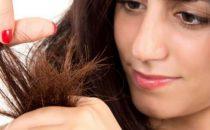 حاربي تقصف الشعر بروتين عناية متكامل