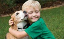 اكتشفي أهمية العلاقة بين الحيوان الأليف والطفل