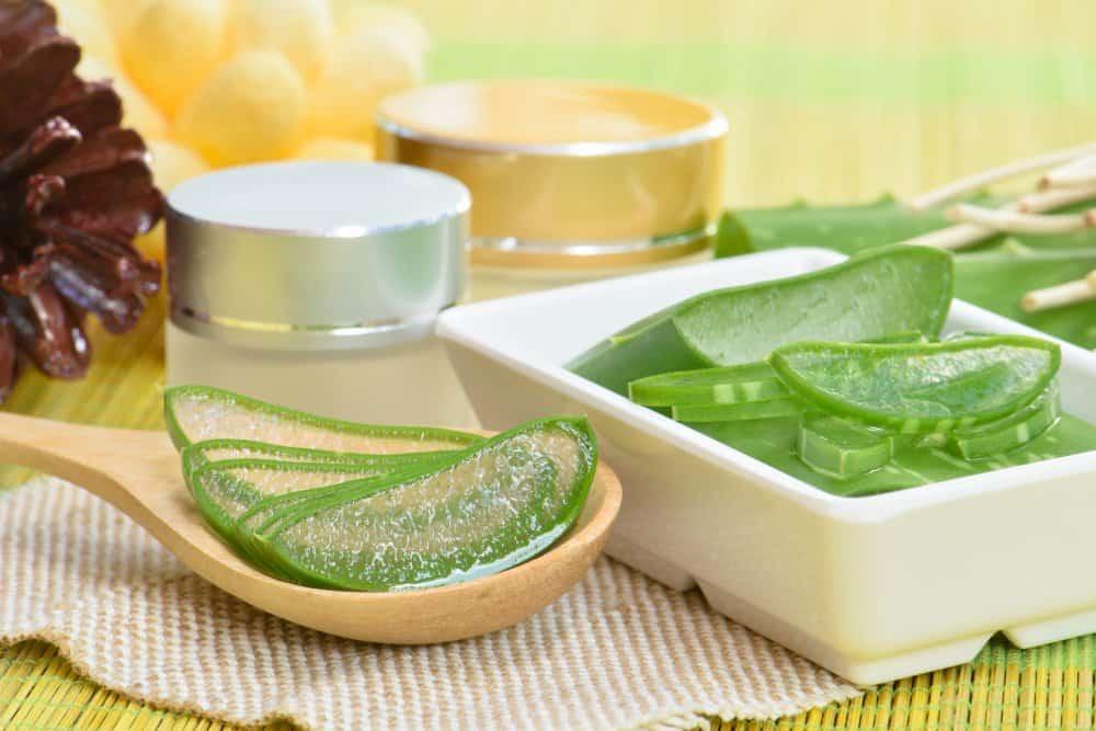 الصبار والعسل لعلاج مشاكل المعدة