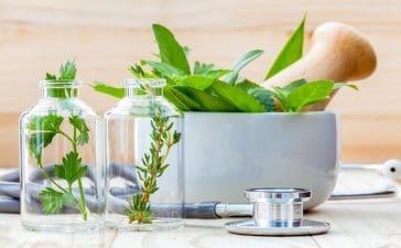 أعشاب طبيعية تساعد على الاسترخاء وتخفيف التوتر