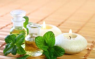 الاستخدامات العلاجية والصحية للنعناع