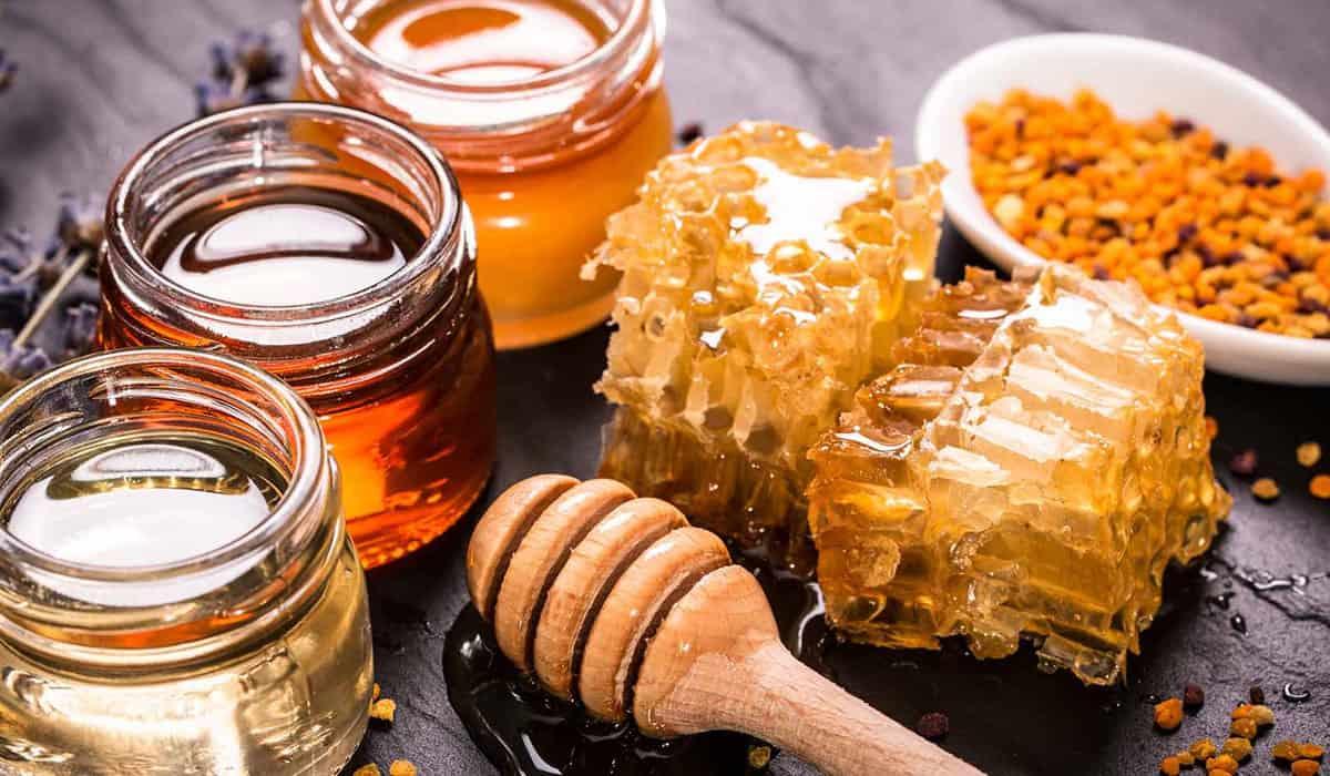 عسل الكالبتوس وفوائده الصحية