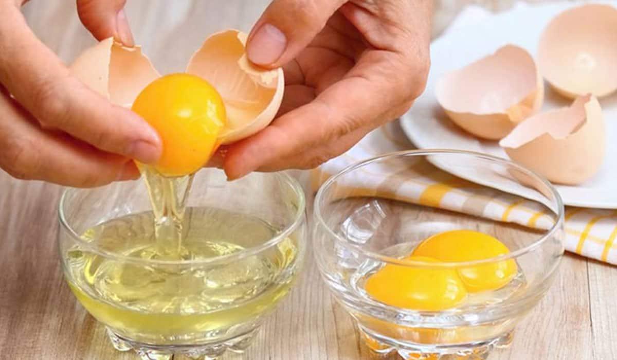 أضرار البيض للشعر