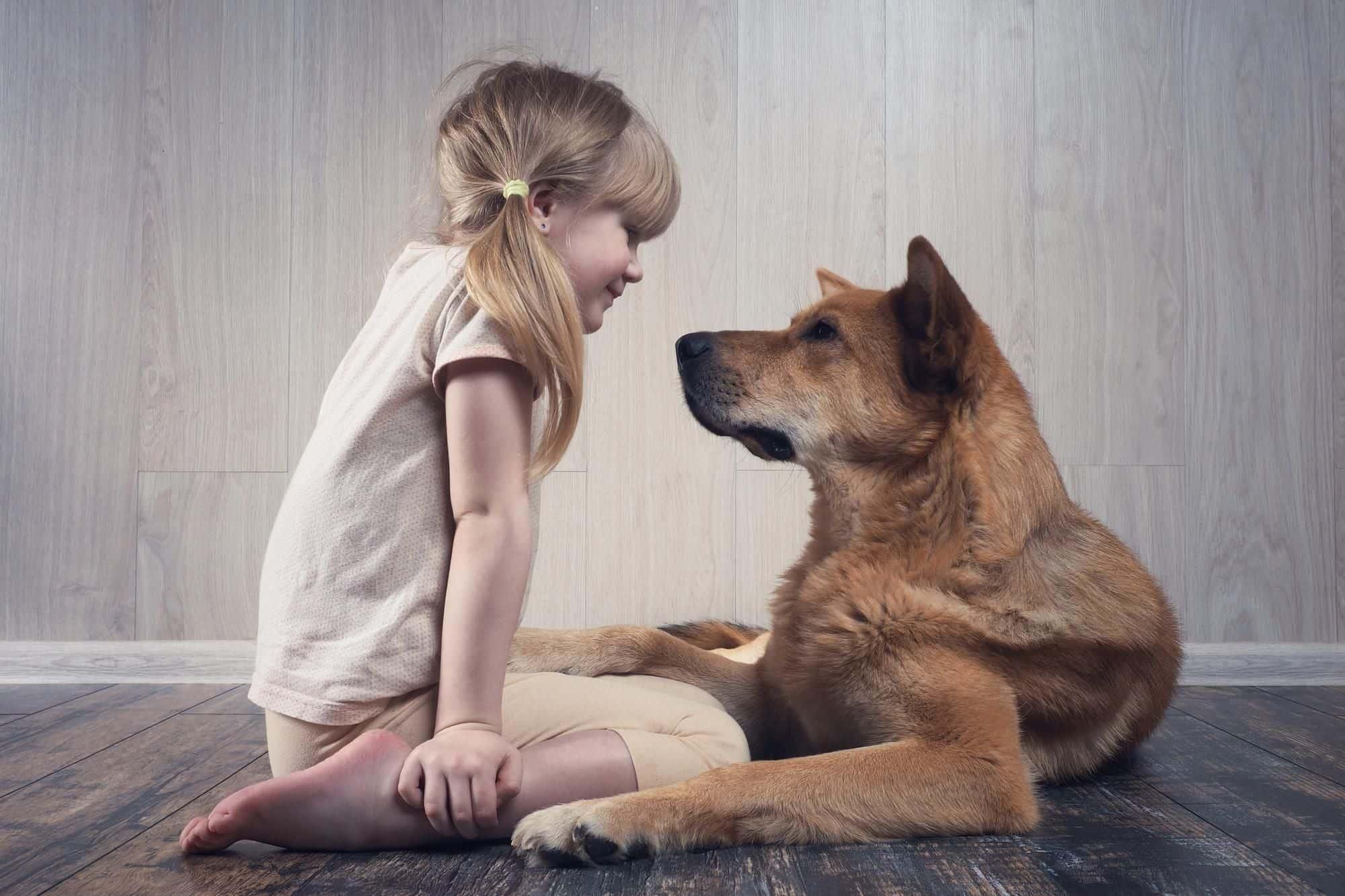 كيف ندعم الطفل عند وفاة حيوانه المفضل ؟