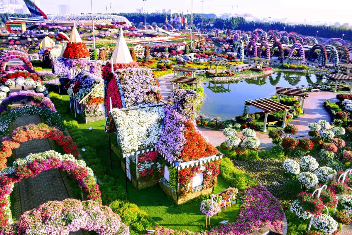 الحديقة المعجزة