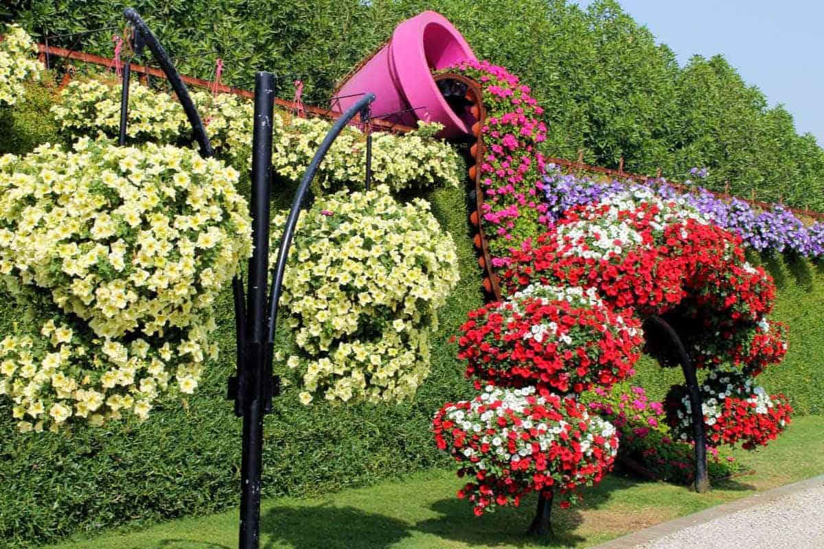حديقة الزهور في دبي تصاميم تحبس الأنفاس