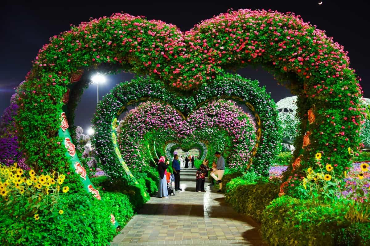 حديقة الزهور في دبي تصاميم كل ما تحتاج لتكون في أفضل حالاتك