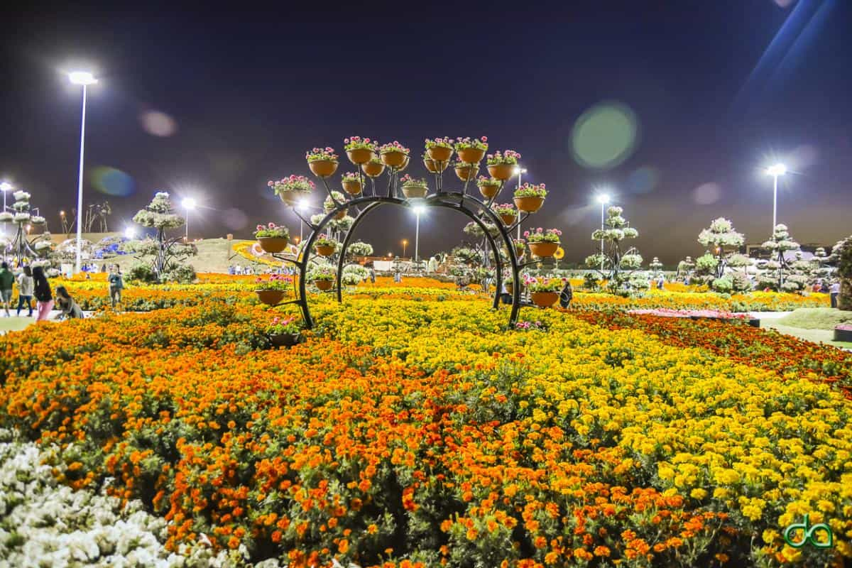 حديقة الزهور في دبي