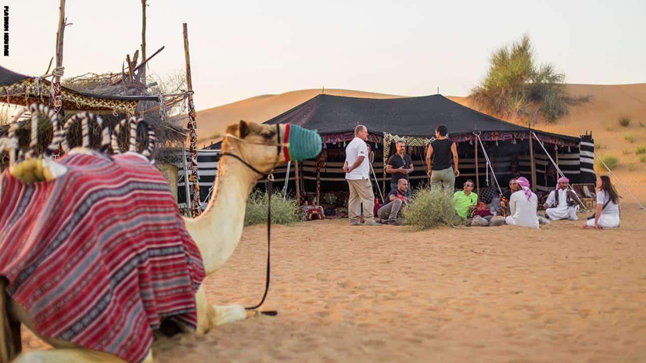 حياة البدو في دبي قصة من أجل البقاء