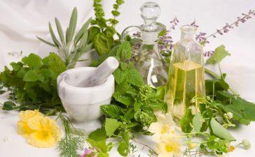 أعشاب طبيعية لعلاج نقص المناعة