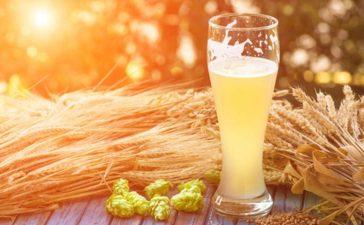 إليك أهم الفوائد الصحية لشراب الشعير