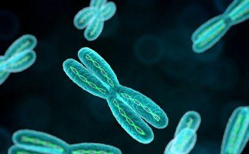 الأمراض الوراثية