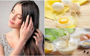 أقنعة البيض للعناية بالشعر التالف