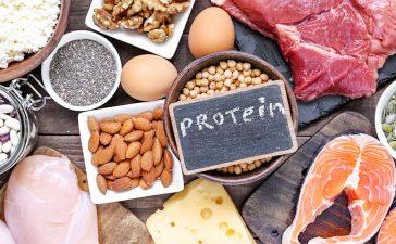 ريجيم البروتين
