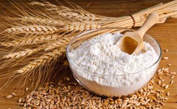 طحين القمح
