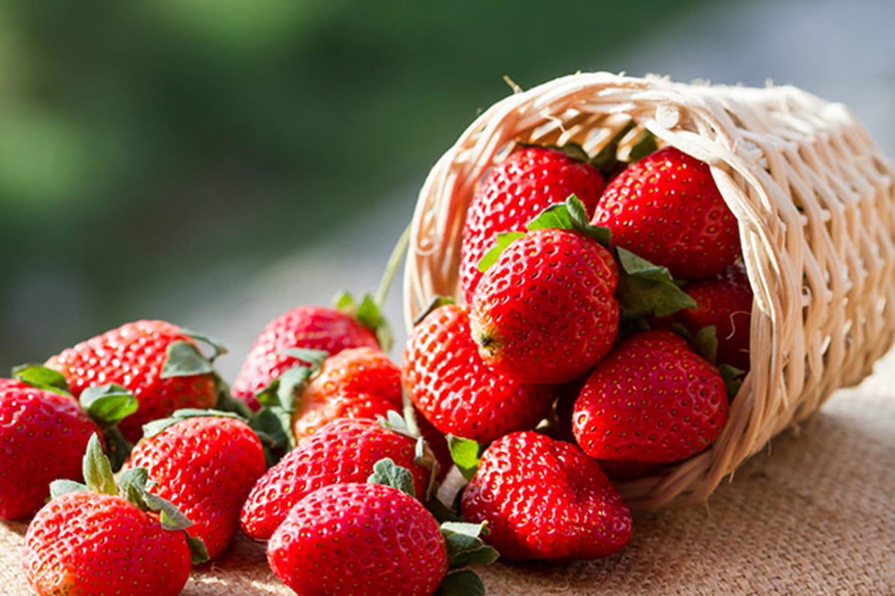 6 فوائد للفراولة صحية